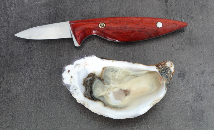 Emergo designs oyster knife oester mes yerseke
